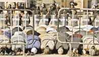 'Mahalle baskısı' Mübarek'i korkuttu