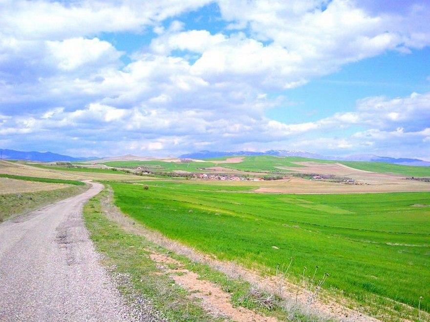 Osmanlı Arşivinde Malatya Arguvan ve Arguvan Alevi Köyleri