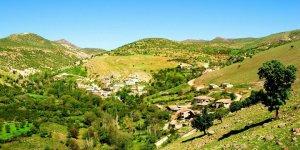Alevi Köyleri ve Yerleşim Alanları