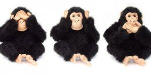 Ödüllü Yarışma : Üç Maymunu Oynayanlar