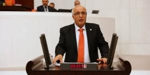HDP'li Özen, Maraş'ta Alevi köylerine sanayi sitesi kurulmasını Meclise taşıdı