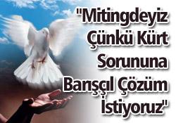 """Kürt Sorununda """"Barış"""" Diyenler 1 Haziran Kadıköy Mitingine"""